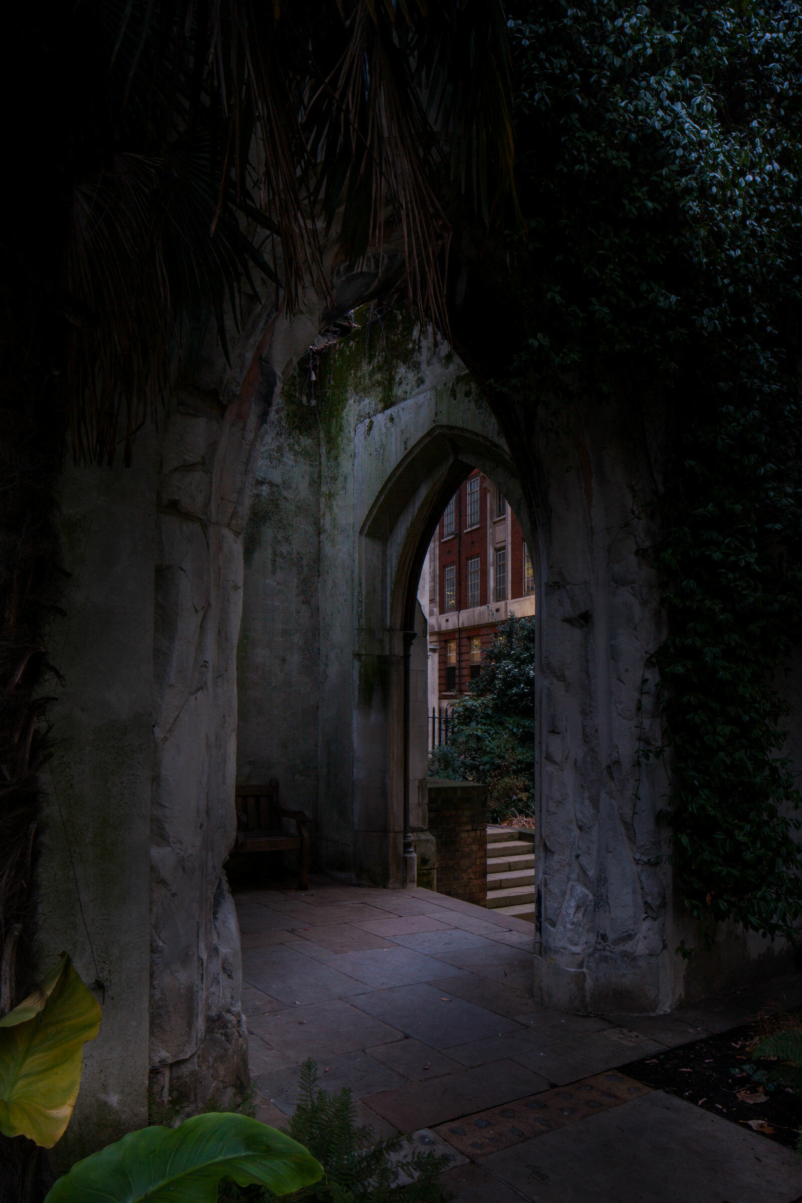 dark view of  St Dunstan's church with foliage